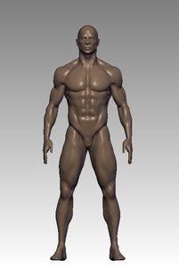3D mesh anatomy