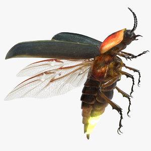 firefly bug 3D