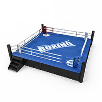 Boxing Area  2