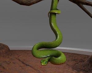 3D viper snake model