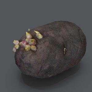 potato sprouts model