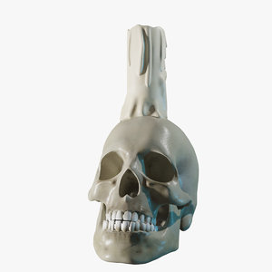 skull candle model