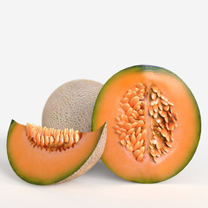 3D cantaloupe fruit