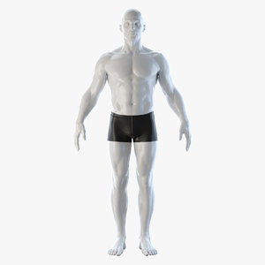 athletic rigged human body 3D model