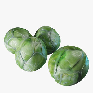 3D model brussel sprouts