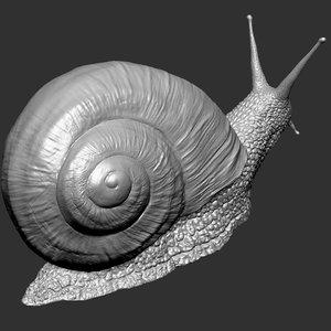 snail zbrush hi 3ds