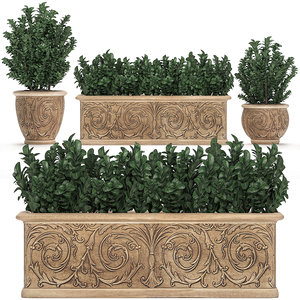 ornamental bushes classic flowerpots 3D model
