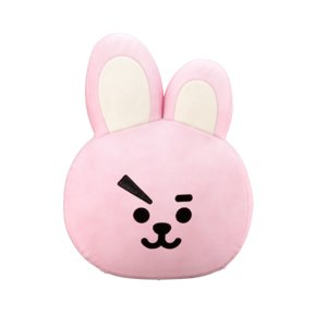 cooky pillow bt21 3D