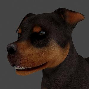 dog rigged model