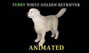 3D white golden retriever furry model