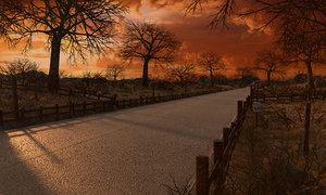 3D road sunset sun