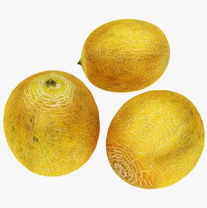melon ready 3D