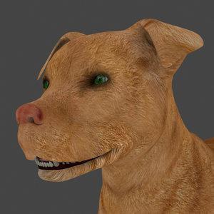 3D dog rigged