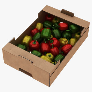 fruit cardboard box withs model
