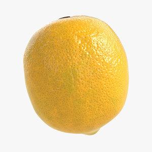 3D lemon polys