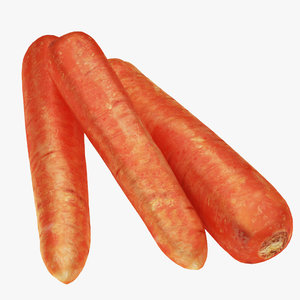carrot product 3D