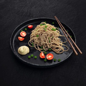 dish chinese noodles model