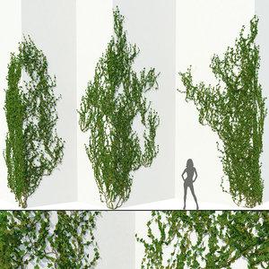 3D model corner walls