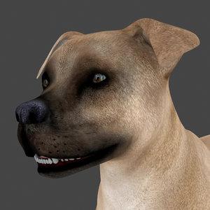 dog rigged 3D model