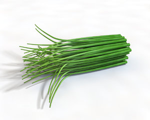 3D chives