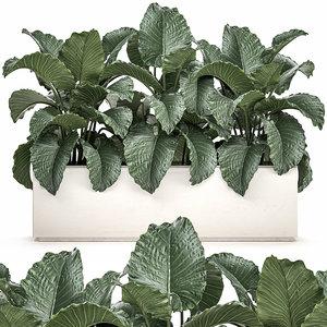 decorative interior white pots 3D model