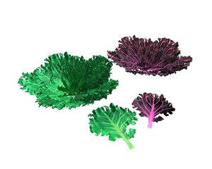 3D model kale