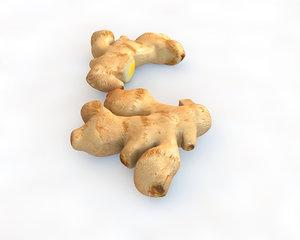 3D ginger model