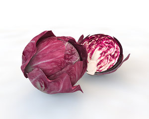 3D model cabbage artichoke