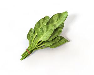3D model spinach artichoke