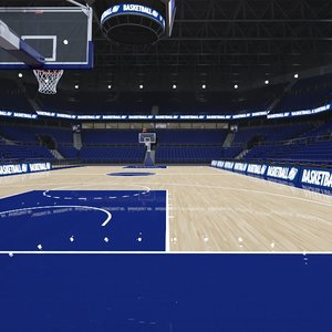 3D basketball arena