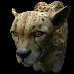3D cheetah head