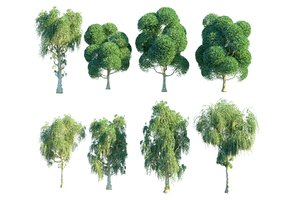 3D perfect garden tree pack model