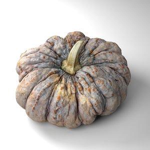 3D warty pumpkin model