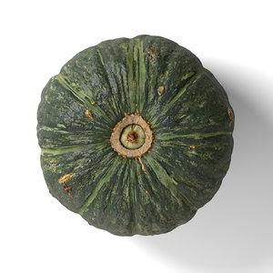japanese green pumpkin 3D model