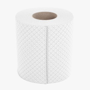 toilet paper model