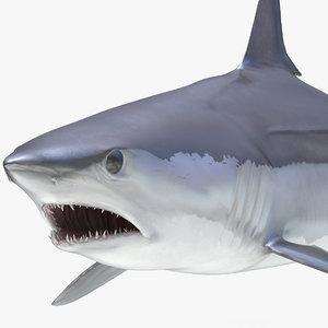 3D shortfin mako shark rigged