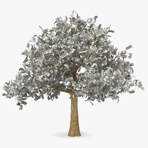 money tree dollar bills 3D model
