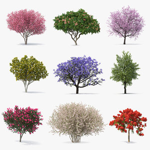 3D model flowering bushes trees 6