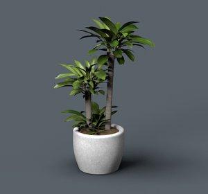 potted plant palm 3D model