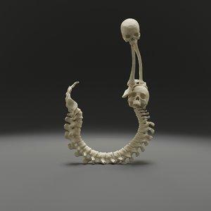 letter j bones skeleton 3D