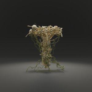 3D letter bones skeleton model