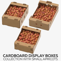 Cardboard Display Boxes Collection with Small Apricots