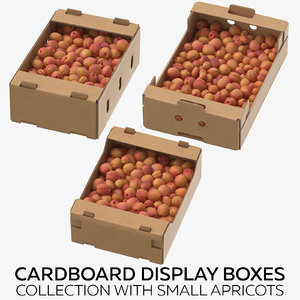 cardboard display boxes small 3D model
