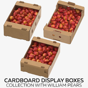cardboard display boxes william 3D model