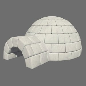 3D igloo architecture