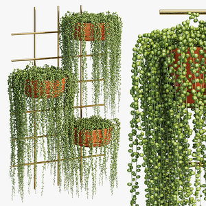 terra cotta wall 3D