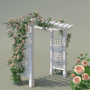 garden arch climbing peony 3D model