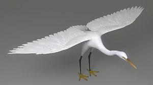 3D egret rigged animation model