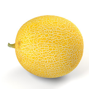 3D model yellow japanese melon