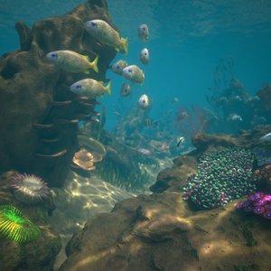 reef pbr 3D model